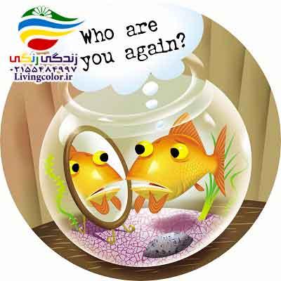 حافظه ماهی ها
